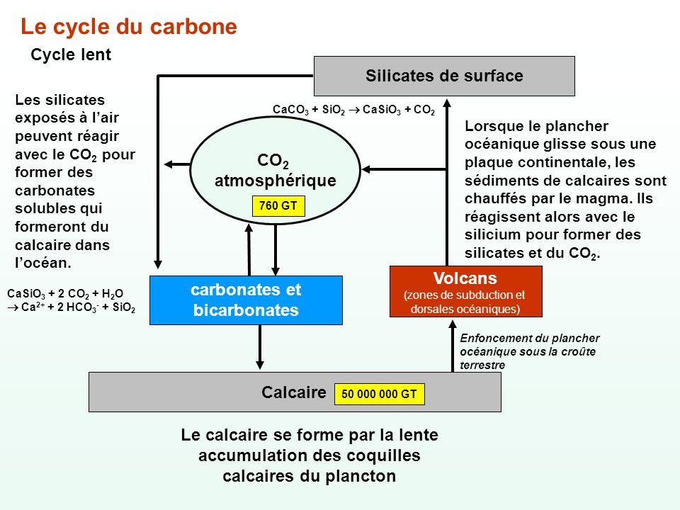 Le cycle du carbone Cycle lent Calcaire Le calcaire se forme par la lente accumulation des coquilles calcaires du plancton CO 2 atmosphérique 760 GT c