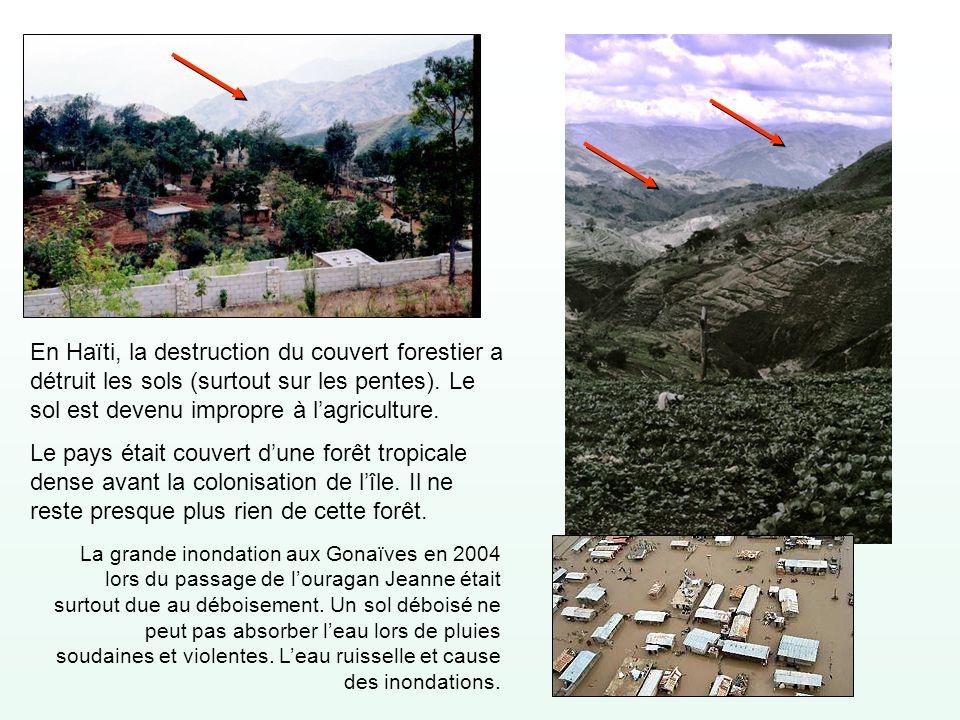 En Haïti, la destruction du couvert forestier a détruit les sols (surtout sur les pentes). Le sol est devenu impropre à lagriculture. Le pays était co