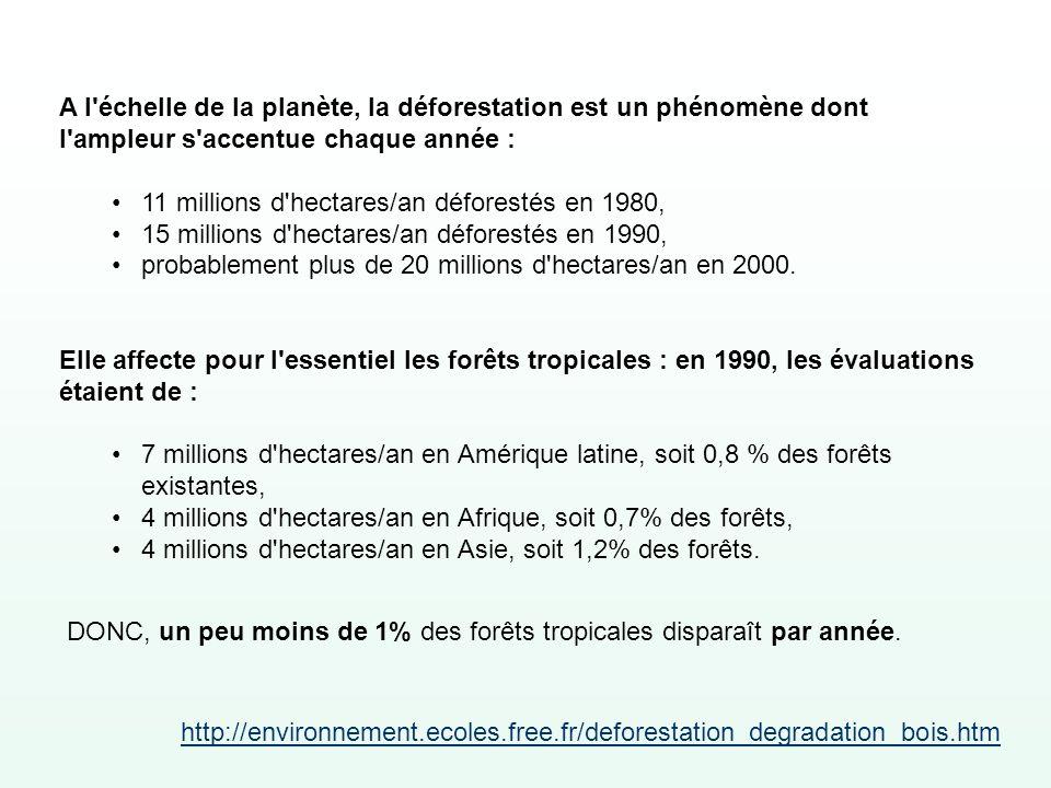 A l'échelle de la planète, la déforestation est un phénomène dont l'ampleur s'accentue chaque année : 11 millions d'hectares/an déforestés en 1980, 15