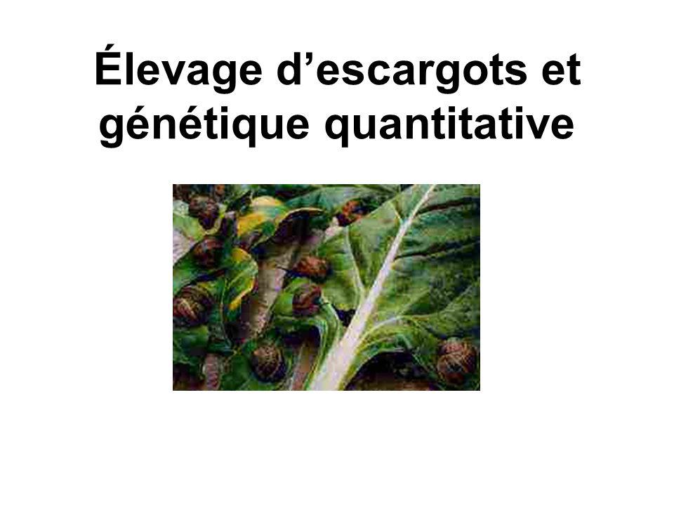 a)Matériel et méthodes Espèce: Helix aspersa aspersa 500 escargots sauvages= G0 –3 générations successives sans sélection:G1, G2 et G3 =>Mesure de lhéritabilité et des corrélations phénotypique et génotypique =>mesure âge et poids adulte + nombre et poids œufs.