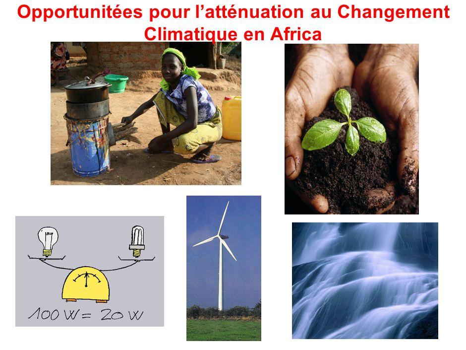 Opportunitées pour latténuation au Changement Climatique en Africa