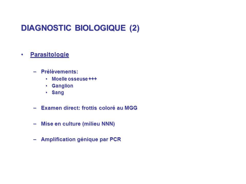 DIAGNOSTIC BIOLOGIQUE (2) ParasitologieParasitologie –Prélèvements: Moelle osseuse +++Moelle osseuse +++ GanglionGanglion SangSang –Examen direct: frottis coloré au MGG –Mise en culture (milieu NNN) –Amplification génique par PCR