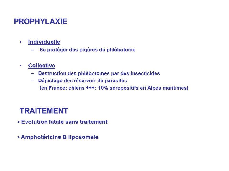 PROPHYLAXIE IndividuelleIndividuelle – Se protéger des piqûres de phlébotome CollectiveCollective –Destruction des phlébotomes par des insecticides –Dépistage des réservoir de parasites (en France: chiens +++: 10% séropositifs en Alpes maritimes) (en France: chiens +++: 10% séropositifs en Alpes maritimes) TRAITEMENT Evolution fatale sans traitement Evolution fatale sans traitement Amphotéricine B liposomale Amphotéricine B liposomale