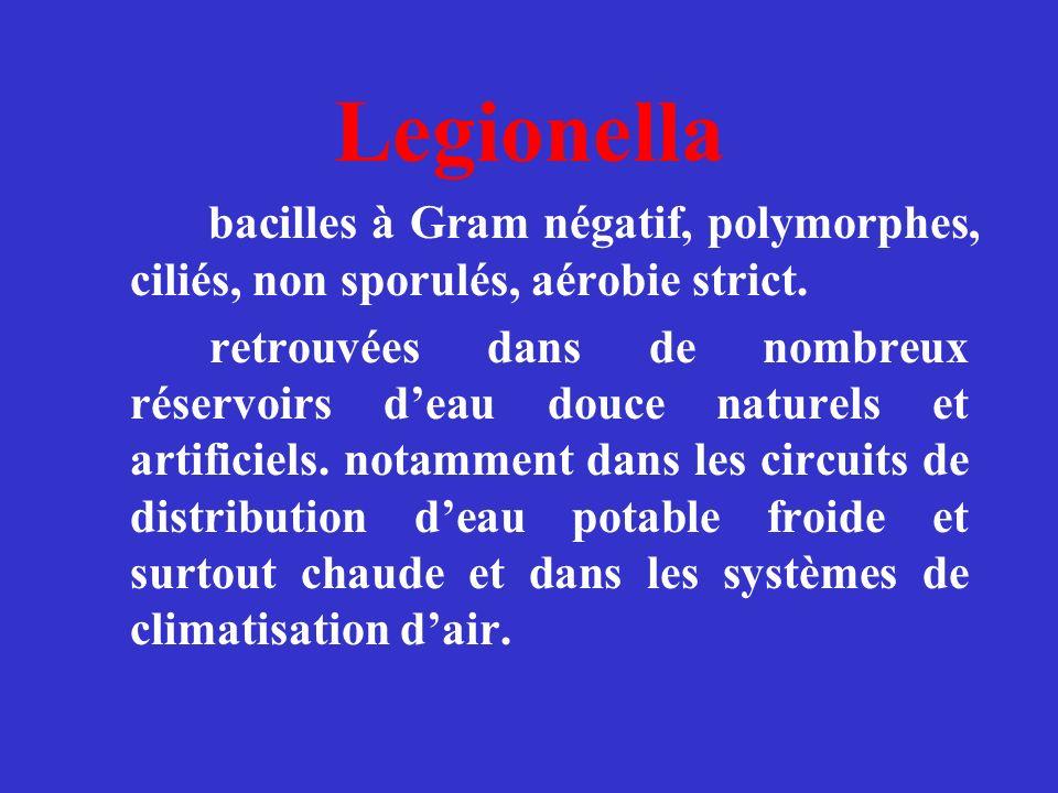 Legionella bacilles à Gram négatif, polymorphes, ciliés, non sporulés, aérobie strict. retrouvées dans de nombreux réservoirs deau douce naturels et a
