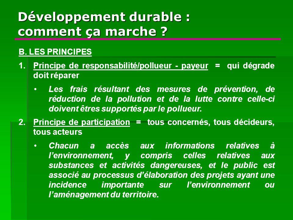 Développement durable : comment ça marche ? B. LES PRINCIPES 1.Principe de responsabilité/pollueur - payeur = qui dégrade doit réparer Les frais résul
