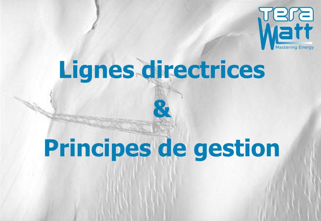 Lignes directrices & Principes de gestion