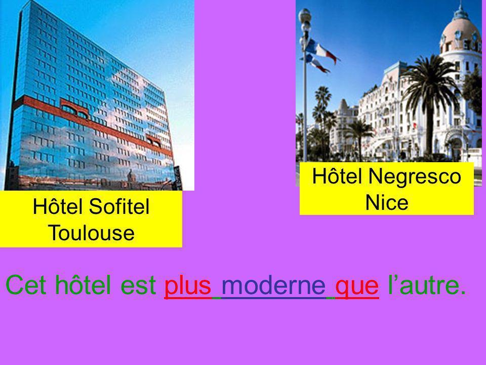Hôtel Negresco Nice Hôtel Sofitel Toulouse Cet hôtel est plus moderne que lautre.