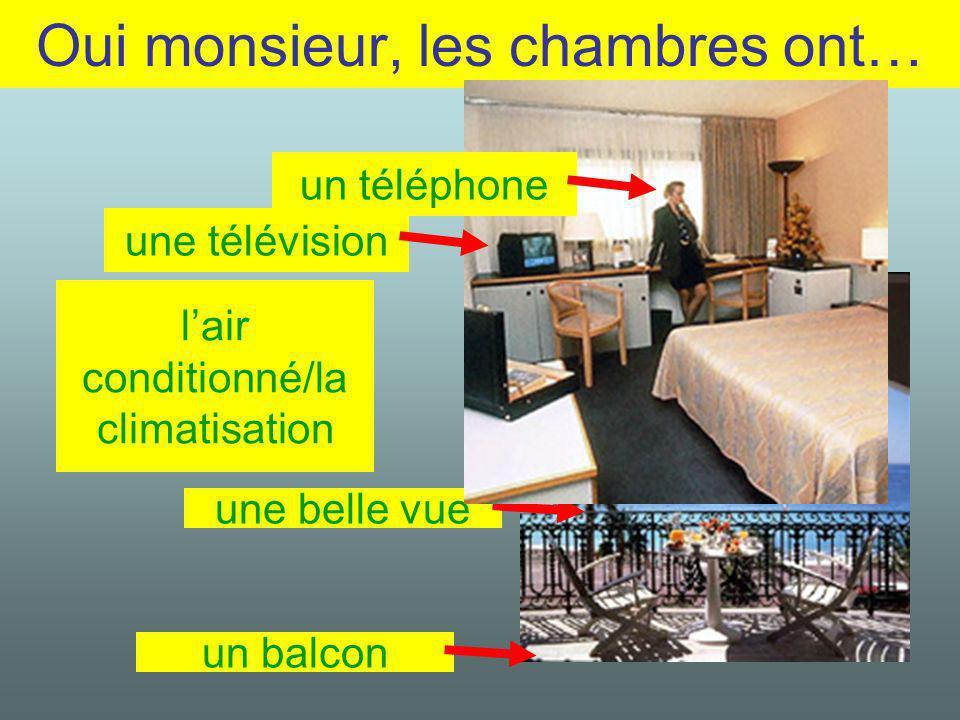 Oui monsieur, les chambres ont… lair conditionné/la climatisation une belle vue un téléphone une télévision un balcon