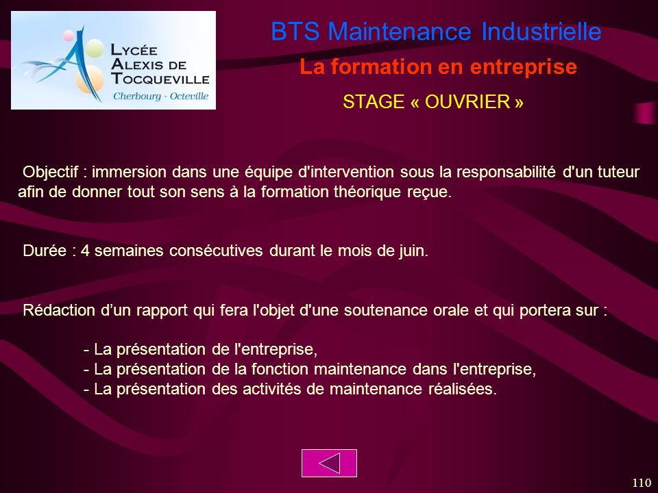 BTS Maintenance Industrielle 110 La formation en entreprise Objectif : immersion dans une équipe d'intervention sous la responsabilité d'un tuteur afi