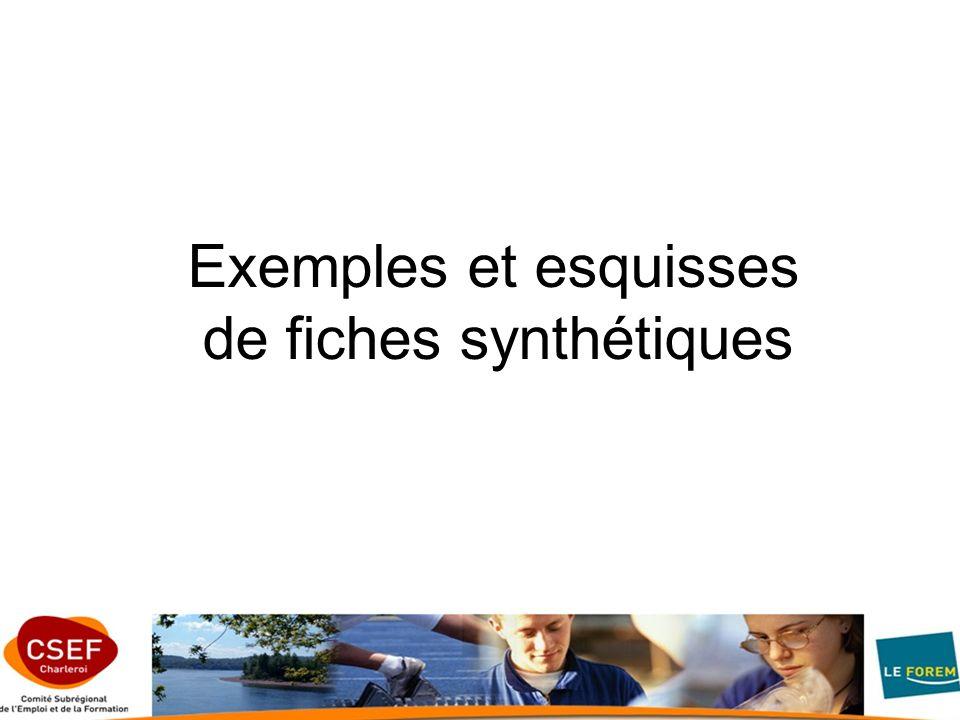 Exemples et esquisses de fiches synthétiques