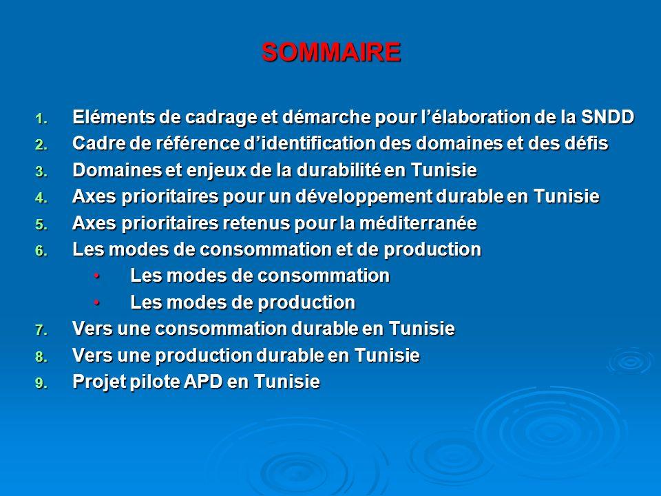 SOMMAIRE 1. Eléments de cadrage et démarche pour lélaboration de la SNDD 2.