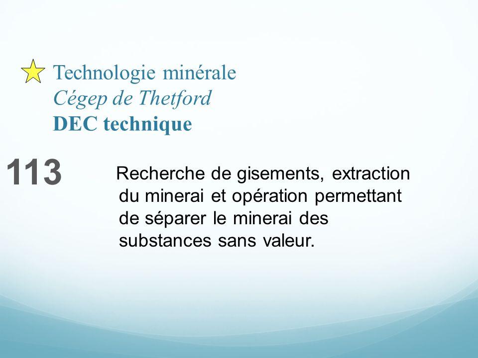 Technologie minérale Cégep de Thetford DEC technique 113 Recherche de gisements, extraction du minerai et opération permettant de séparer le minerai des substances sans valeur.