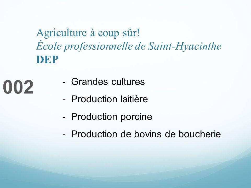 Agriculture à coup sûr! École professionnelle de Saint-Hyacinthe DEP 002 - Grandes cultures - Production laitière - Production porcine - Production de