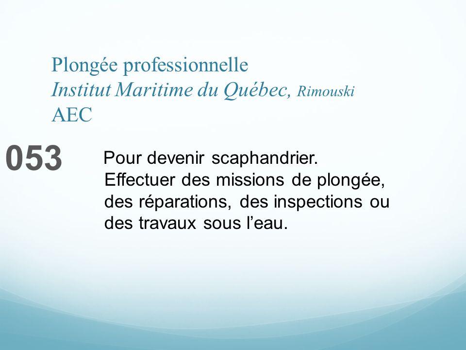 Plongée professionnelle Institut Maritime du Québec, Rimouski AEC 053 Pour devenir scaphandrier. Effectuer des missions de plongée, des réparations, d