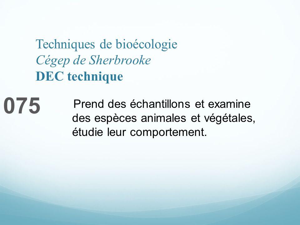 Techniques de bioécologie Cégep de Sherbrooke DEC technique 075 Prend des échantillons et examine des espèces animales et végétales, étudie leur comportement.