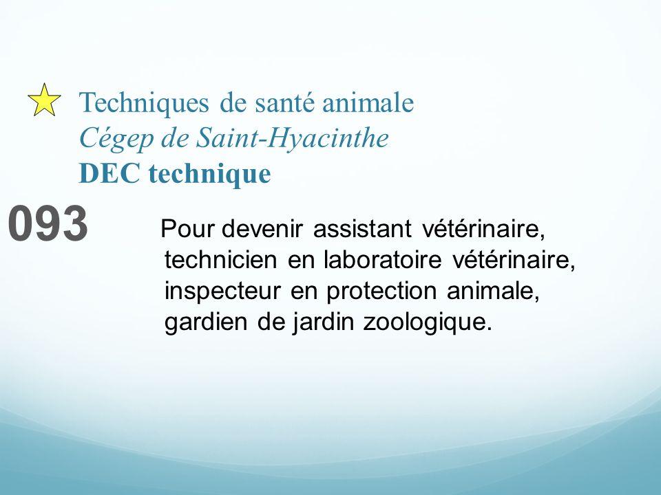 Techniques de santé animale Cégep de Saint-Hyacinthe DEC technique 093 Pour devenir assistant vétérinaire, technicien en laboratoire vétérinaire, inspecteur en protection animale, gardien de jardin zoologique.