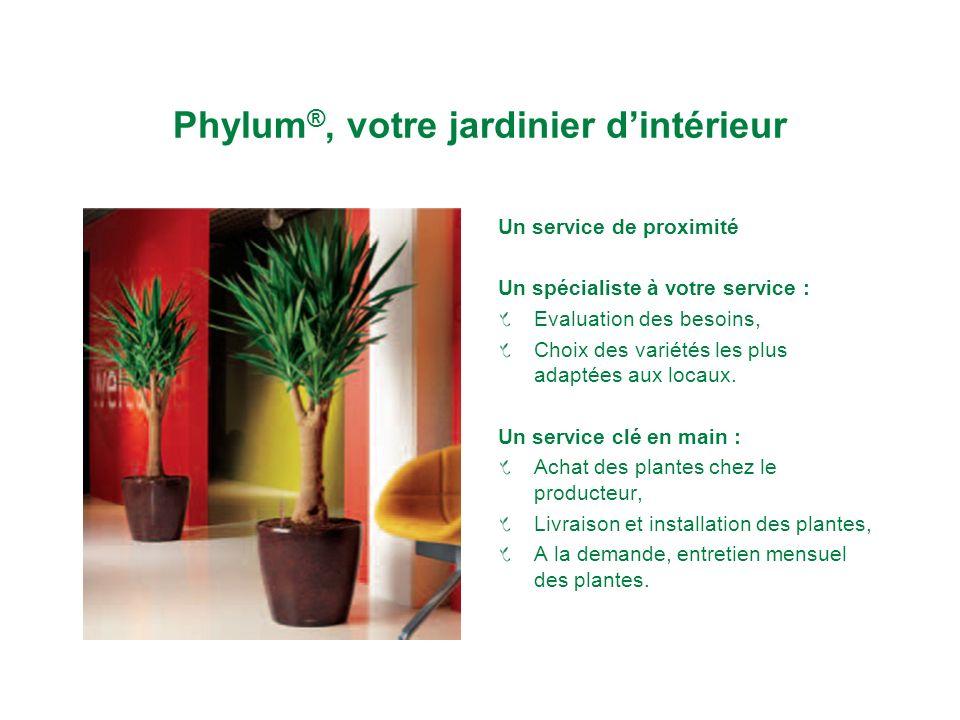 Phylum ®, votre jardinier dintérieur Un service de proximité Un spécialiste à votre service : Evaluation des besoins, Choix des variétés les plus adaptées aux locaux.