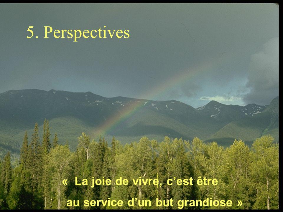 5. Perspectives « La joie de vivre, cest être au service dun but grandiose »