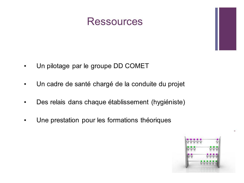 Ressources Un pilotage par le groupe DD COMET Un cadre de santé chargé de la conduite du projet Des relais dans chaque établissement (hygiéniste) Une