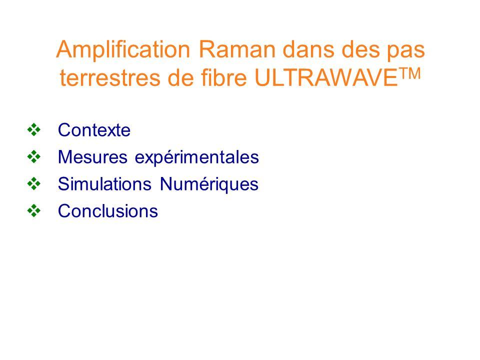 Amplification Raman dans des pas terrestres de fibre ULTRAWAVE TM Contexte Mesures expérimentales Simulations Numériques Conclusions