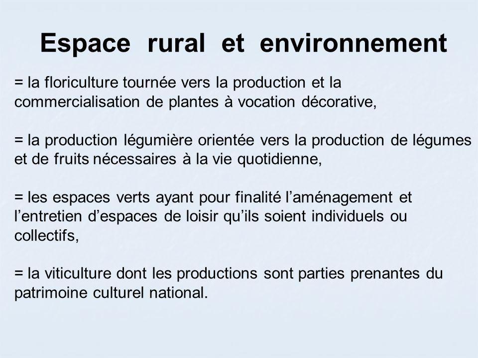 Espace rural et environnement = la floriculture tournée vers la production et la commercialisation de plantes à vocation décorative, = la production l