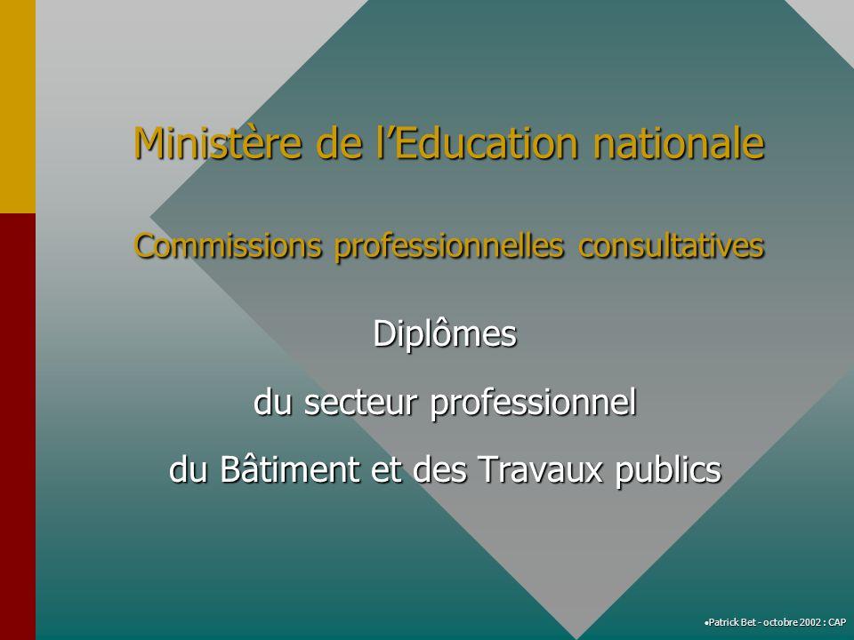 Ministère de lEducation nationale Commissions professionnelles consultatives Diplômes du secteur professionnel du Bâtiment et des Travaux publics Patr