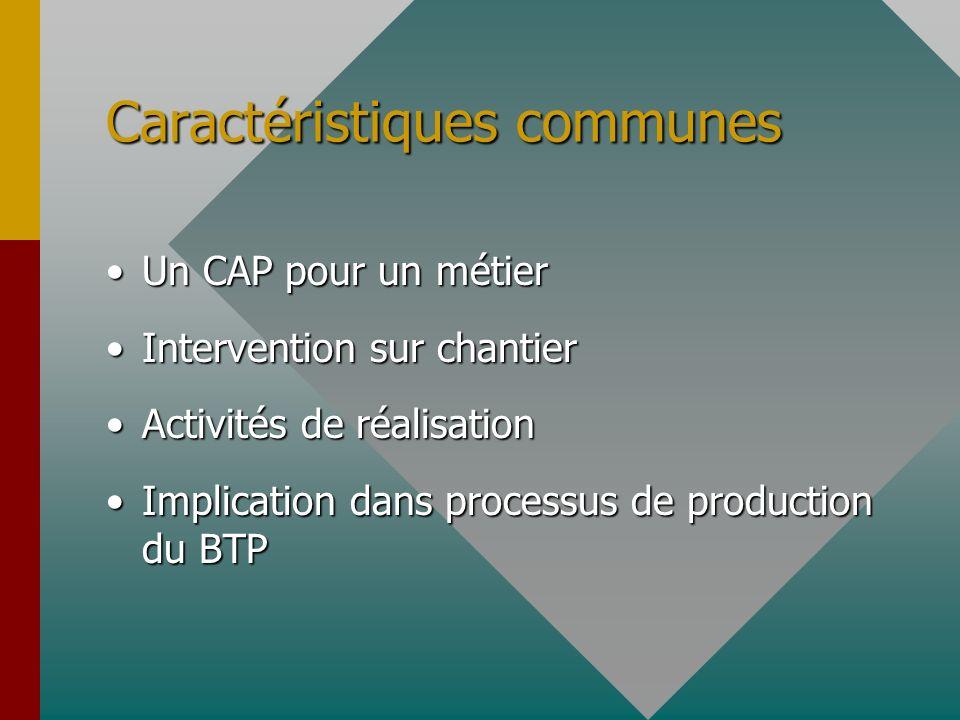 Caractéristiques communes Un CAP pour un métierUn CAP pour un métier Intervention sur chantierIntervention sur chantier Activités de réalisationActivi
