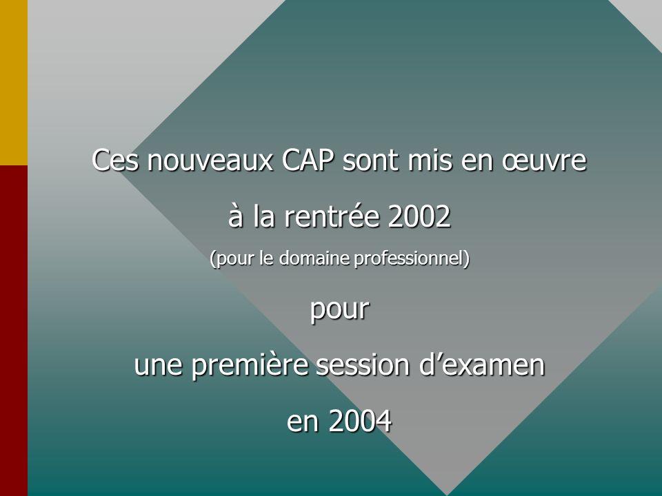 Ces nouveaux CAP sont mis en œuvre à la rentrée 2002 (pour le domaine professionnel) pour une première session dexamen en 2004
