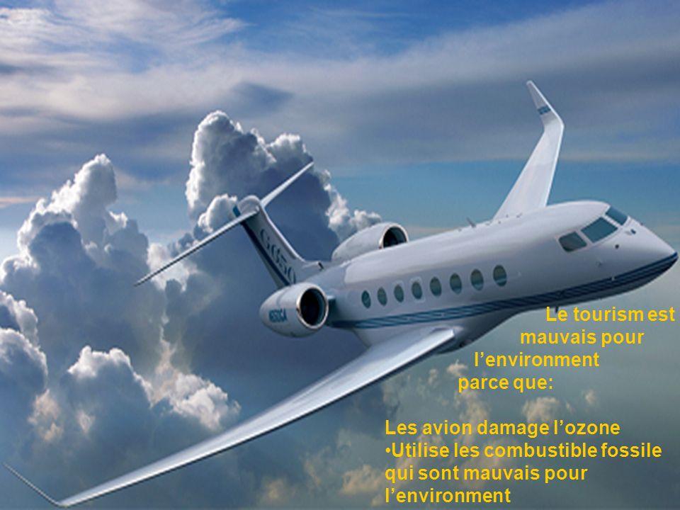 Le tourism est mauvais pour lenvironment parce que: Les avion damage lozone Utilise les combustible fossile qui sont mauvais pour lenvironment