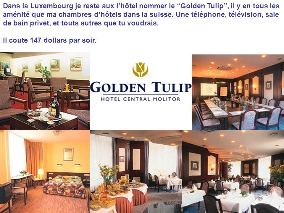 Dans la Luxembourg je reste aux lhôtel nommer le Golden Tulip, il y en tous les aménité que ma chambres dhôtels dans la suisse. Une téléphone, télévis