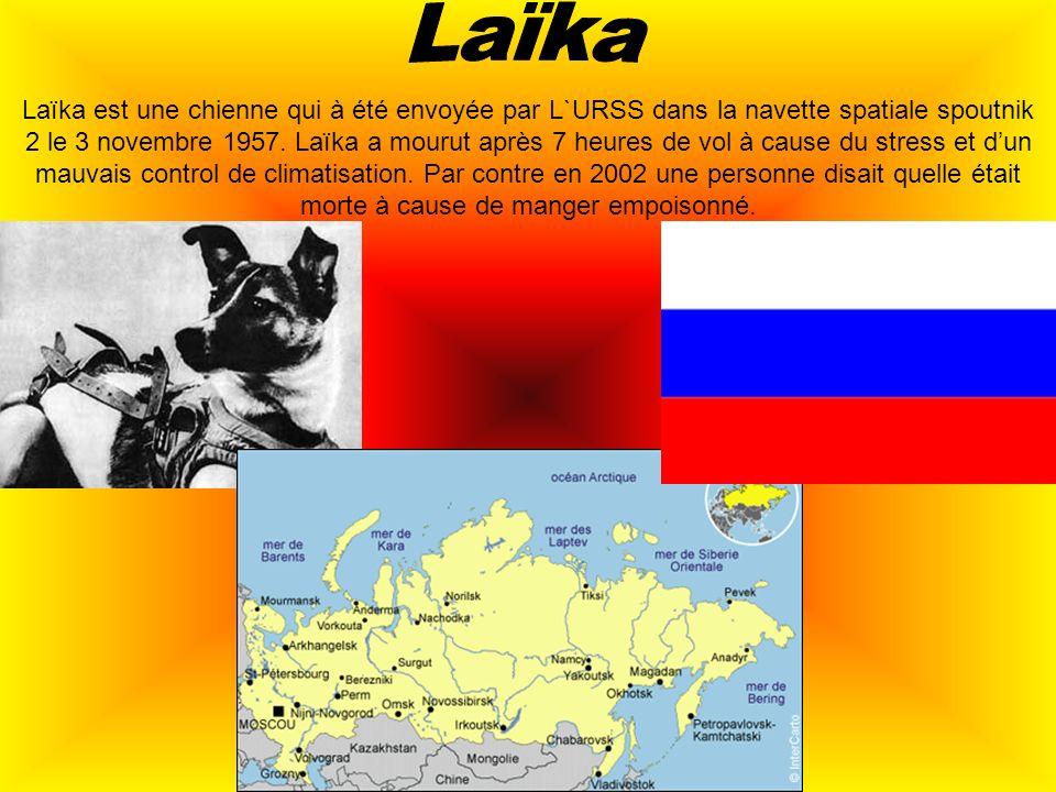 Laïka est une chienne qui à été envoyée par L`URSS dans la navette spatiale spoutnik 2 le 3 novembre 1957. Laïka a mourut après 7 heures de vol à caus