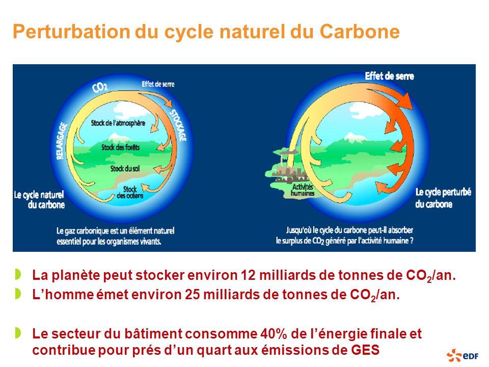 Perturbation du cycle naturel du Carbone La planète peut stocker environ 12 milliards de tonnes de CO 2 /an. Lhomme émet environ 25 milliards de tonne