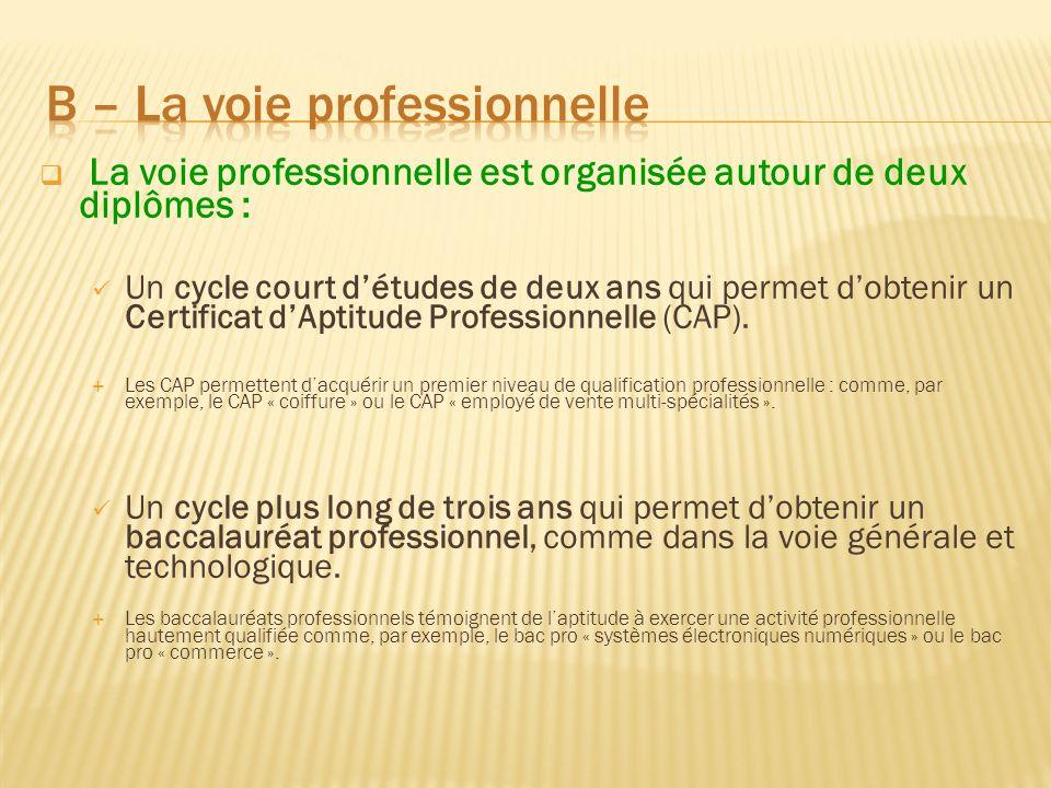 La voie professionnelle est organisée autour de deux diplômes : Un cycle court détudes de deux ans qui permet dobtenir un Certificat dAptitude Profess