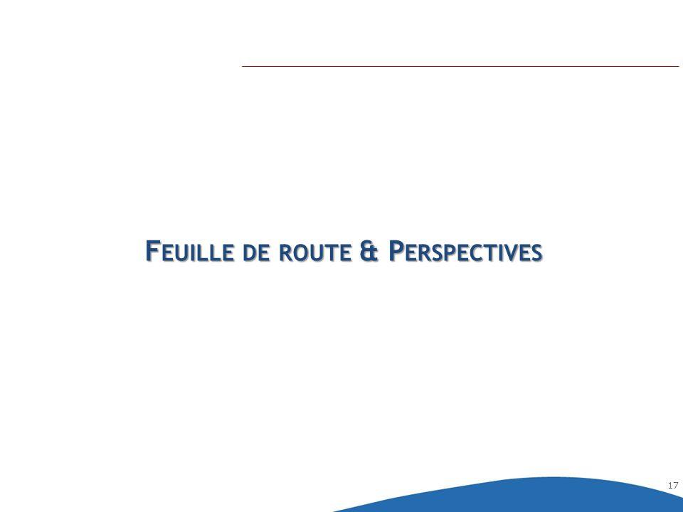 17 F EUILLE DE ROUTE & P ERSPECTIVES