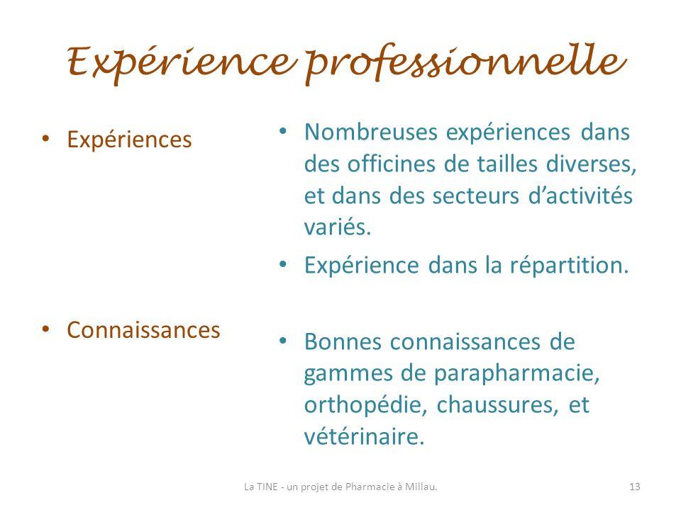 Expérience professionnelle Expériences Connaissances Nombreuses expériences dans des officines de tailles diverses, et dans des secteurs dactivités va