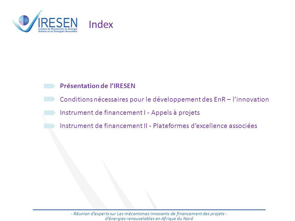 Salon des énergies renouvelables - 2011 Index Présentation de lIRESEN Conditions nécessaires pour le développement des EnR – linnovation Instrument de