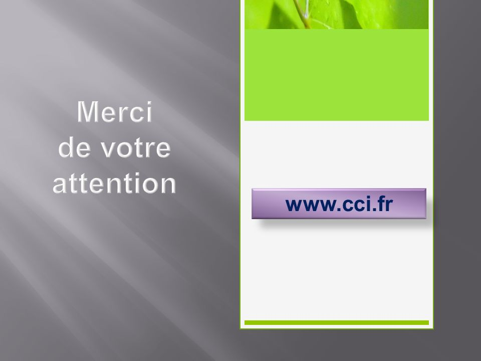 Merci de votre attention www.cci.fr