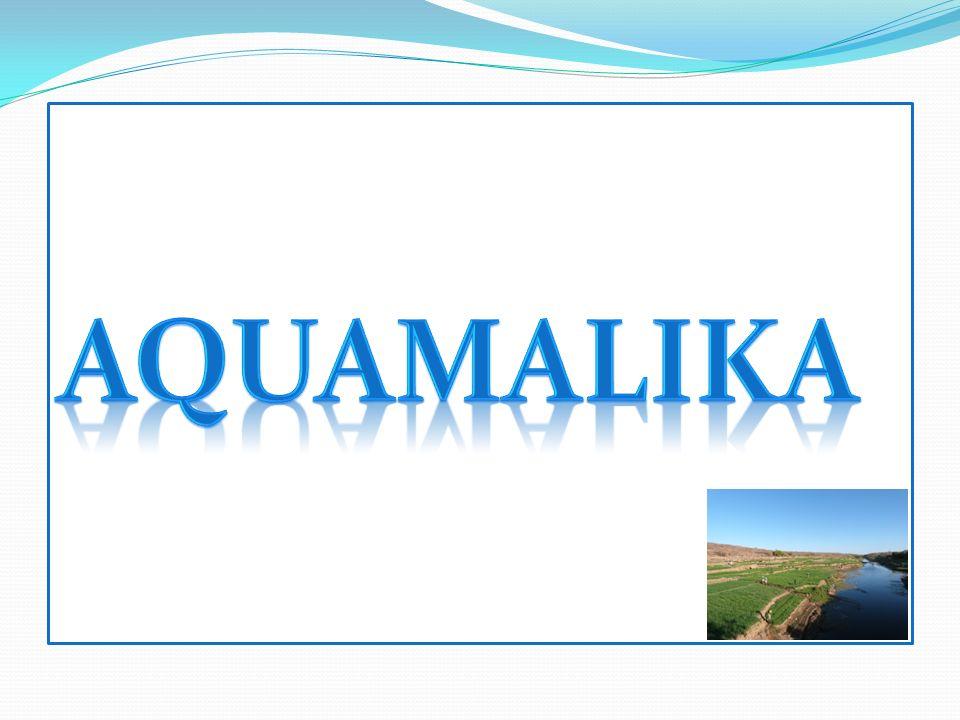 Aquamalika (Aqua, latin= eau ; Malika, arabe = Reine) est un projet né en 2000 suite à la lecture du Manifeste de lEau 1 de Riccardo Petrella (1998).