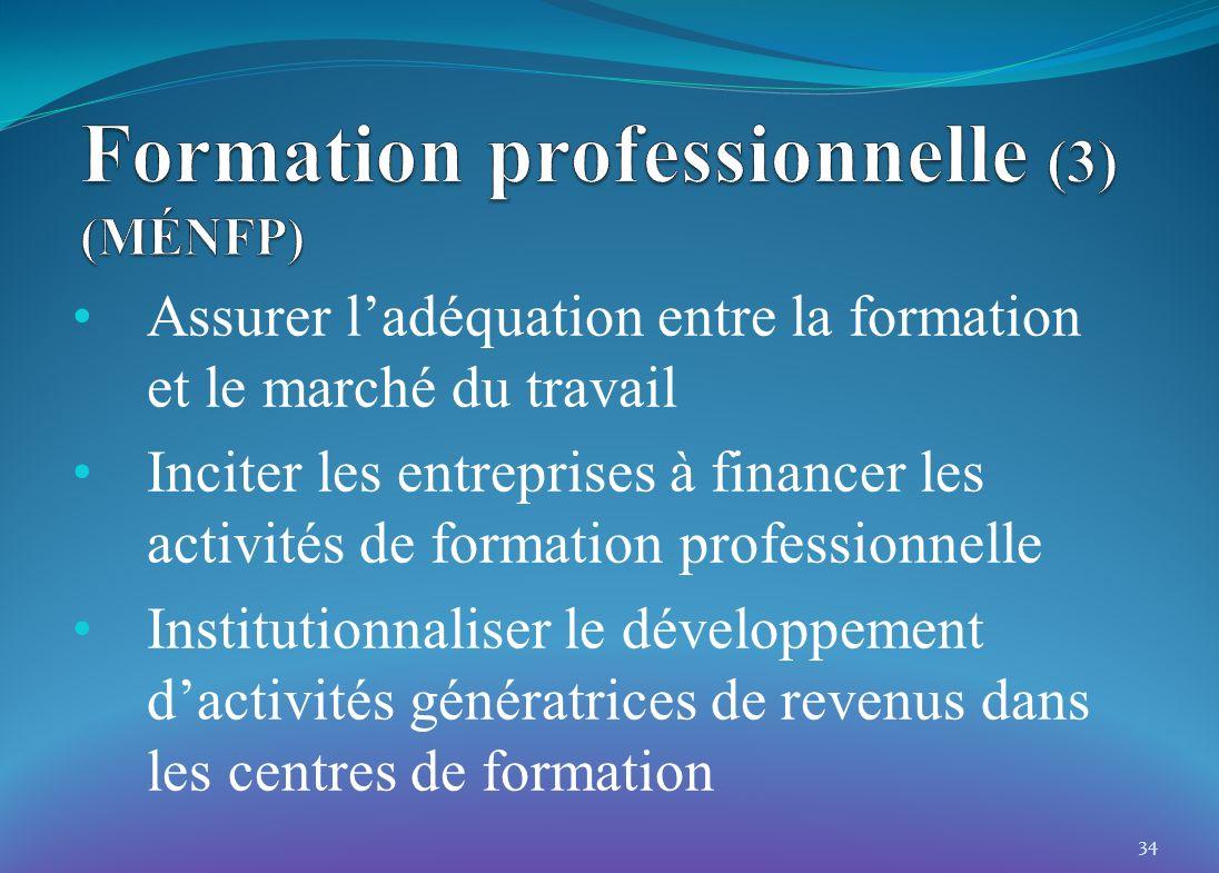 Assurer ladéquation entre la formation et le marché du travail Inciter les entreprises à financer les activités de formation professionnelle Instituti
