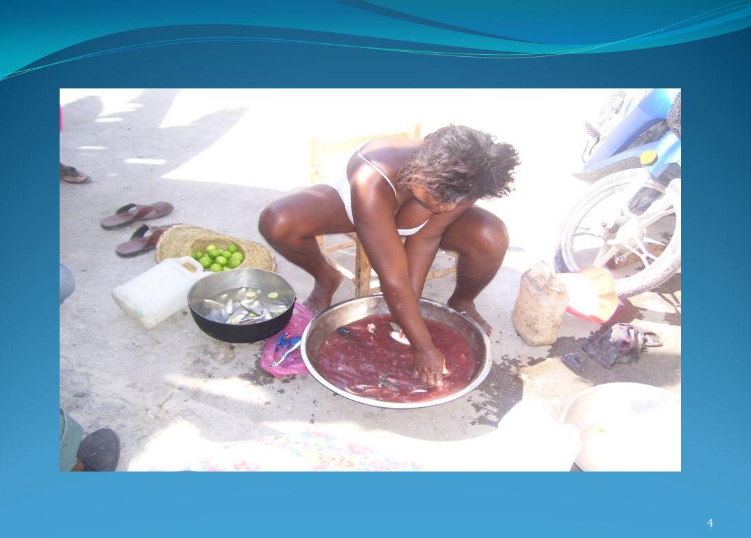 Situé à 323 km au sud de Port-au-Prince sur la mer des Caraïbes, Roche-à-Bateau a une population de près de 16 milles habitants.