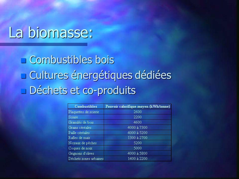 La biomasse: n Combustibles bois n Cultures énergétiques dédiées n Déchets et co-produits