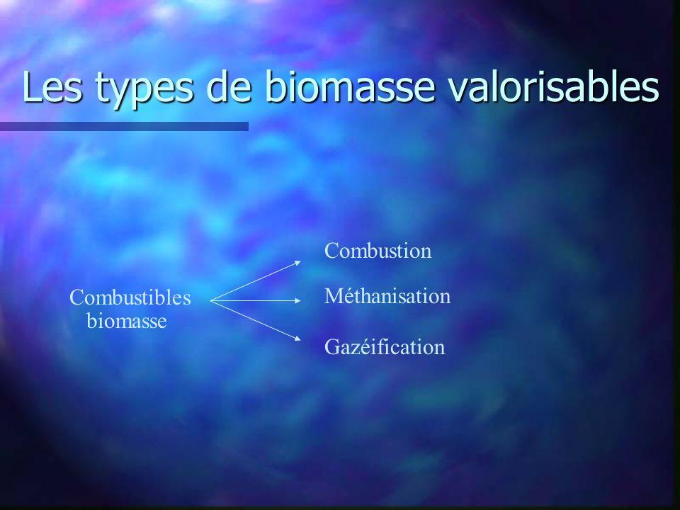 Les types de biomasse valorisables Combustibles biomasse Combustion Méthanisation Gazéification