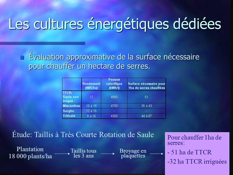Les cultures énergétiques dédiées n Évaluation approximative de la surface nécessaire pour chauffer un hectare de serres. Étude: Taillis à Très Courte