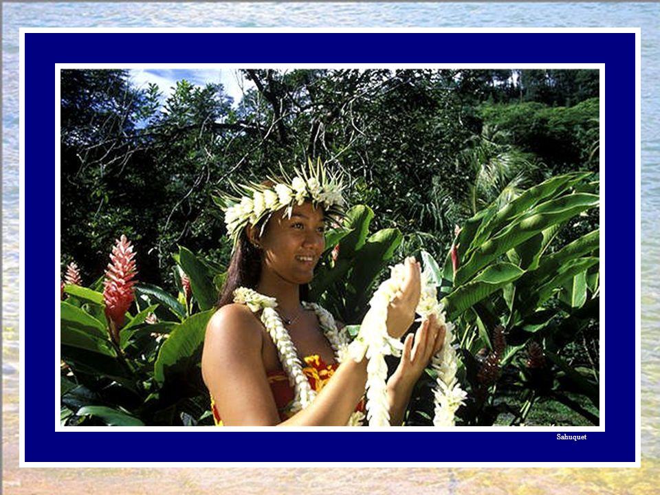 Retour à Tahiti. Le poisson jeta l'ancre à Papeete. La femme le quitta à regret, le remercia. L'oiseau l'attendait déjà. Comme le voulait la coutume,