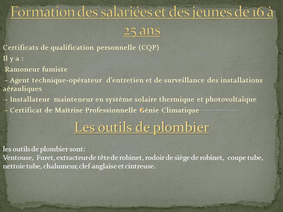 Certificats de qualification personnelle (CQP) Il y a : - Ramoneur fumiste - - Agent technique-opérateur dentretien et de surveillance des installatio