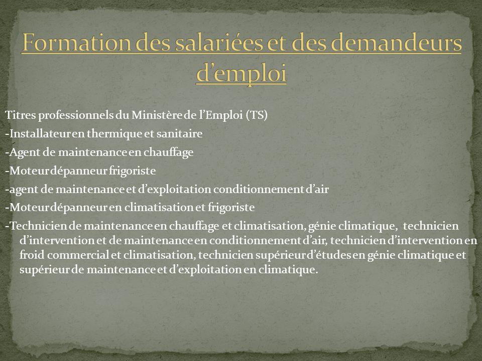 Titres professionnels du Ministère de lEmploi (TS) -Installateur en thermique et sanitaire -Agent de maintenance en chauffage -Moteur dépanneur frigor