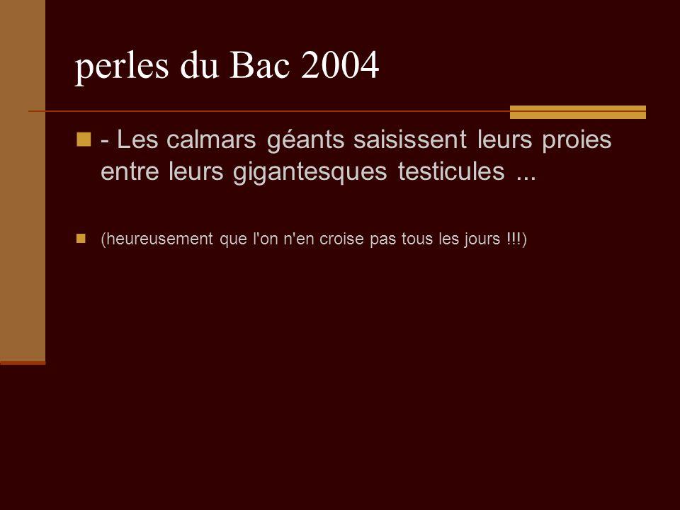 perles du Bac 2004 - Les calmars géants saisissent leurs proies entre leurs gigantesques testicules...
