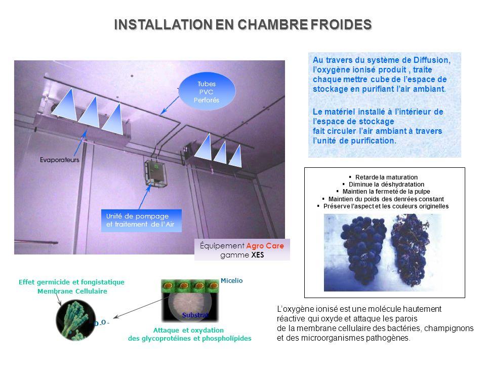Détruit les contaminants organiques, retarde la maturation Nos Equipements purifient lair à lintérieur des chambres froides PROTECTION EN CHAMBRE FROI