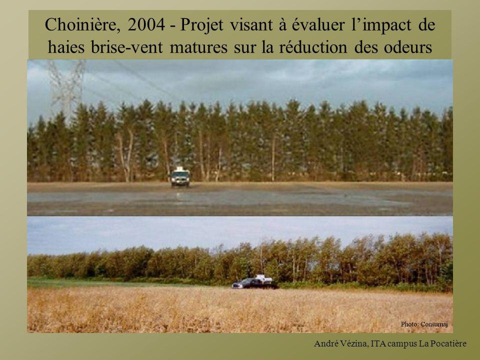 André Vézina, ITA campus La Pocatière Choinière, 2004 - Projet visant à évaluer limpact de haies brise-vent matures sur la réduction des odeurs