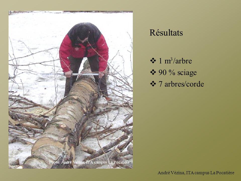 André Vézina, ITA campus La Pocatière Résultats 1 m 3 /arbre 90 % sciage 7 arbres/corde